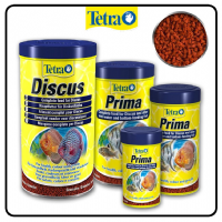 Tetra Prima  All Sizes